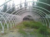 Multifunctional Greenhouse Bracket Greenhouse Support