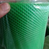 Green Color Extruded Plastic Plain Net