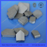 Cemented Carbide Supplier Type S Pieces with ISO9001 Certificate