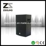 10′′ Speaker Line Audio Active DJ Speaker DJ Equipment R10p