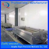 Fish Scale Cleaning Machine Potato Washing and Peeling Machine
