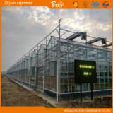 High Output F-Clean Film Greenhouse