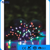 Plastic Material Solar String LED Light with Multicrystal Silicon