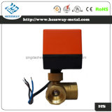 Electric Heating Element Thermostat with CE, Double Temperature Double Control Thermostat