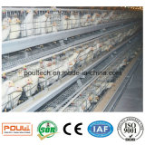 Bset Price Poultry Farm Layer Chicken Cages