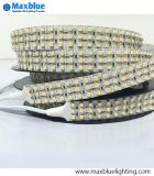 DC24V 360LEDs/M in 3 Lines SMD3528 LED Strip Light