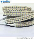 DC24V 360LEDs/M in 3 Lines SMD3528 LED Strip Light
