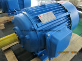 GOST Low Voltage Electric Motor