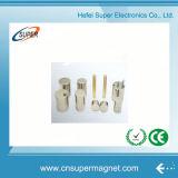China Strong Rectangular Cylinder Magnets