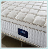 Queen Size Pocket Spring Mattress for Hotel