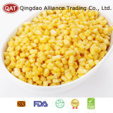IQF Super Sweet Corn Kernels with Good Price