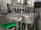 Beverage Packing Machine (RCGF32-32-10)