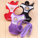 Cute Design Mesh Pets Dog Harness, Pet Supply Pet Harnesses