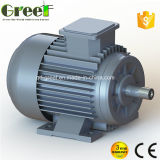 10kw 100kw Low Rpm Permanent Magnet Generator for Wind Turbine