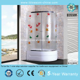 2014 China Hangzhou Manufacture Glass Simple Shower Room (BLS-9622)