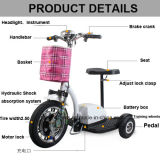 Cheap Price High Quality Lithium Foldable Electric Tricycle with Ce