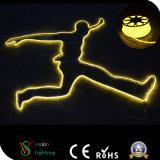 China Supplier LED Christmas Motif Light