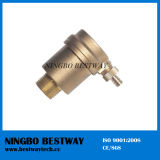 Brass Automatic Air Vent Valve (BW-A12)