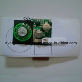 Greeting Card /Brochure/ Invitation Card Sound Module