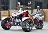 OEM 250cc Trike ATV Quad on Sale