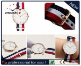 2017 New Fashion OEM Dw Style Nylon Strap Watch in Stainless Steel (DC-007)