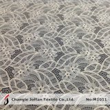 Fashion Raschel Elastic Lace Fabric (M1011)