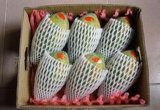 20cm China Supplier Mango Foam Fruit Net Cover