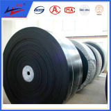 Belt Conveyor Heart Resistant Conveyor Blt