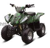 70cc China Fully Automatic ATV Vehicle (FXATV-002A-70cc SB)