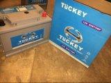 Tuckey DIN75mf 12V75ah Maintenance Free Car Battery