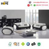 Modern Furniture Genuine Leather Sofa Set (HC6024)