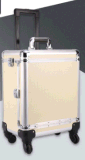 New Large Capacity Cosmetic Beauty Cases with Extandbale Trays