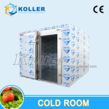 Wolked-in Freezer Room for Ice Storage