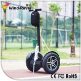 Economical 2 Wheel China Hoverboard Parts