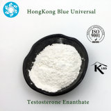 bodybuilding supplement testosterone raw powders