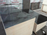 Poplar Multi-Layer Commercial Plywood&Building Film Faced Plywood