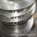Professional Manufacturer Stainless Steel Strips (AISI316)