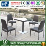 Home Casual Outdoor Rattan Wicker Dining Set (TG-1069)