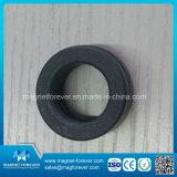 Permanent Ring Ferrite Magnet Speaker Magnet