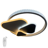 New Arrival 360 Degree LED Acrylic Pendant Light, Modern Pendant Lamp, Neon Light