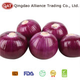 2017 New Crop Purple High Quality Peeled Onion