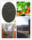 Organic Granular Bio Bacteria Fertilizer Microorganism Fertilizer