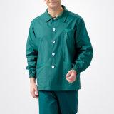 Green Colors Fashionable Nurse & Doctor Uniforms - Workwear