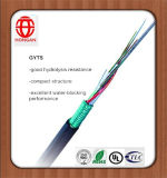 Hot Sale 48 Core Optical Fiber Cable with Competitive Price
