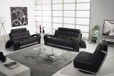Living Room Genuine Leather Sofa (SBL-201)