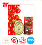 Canned Tomato Ketchup Paste Safa