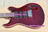 Prs Style / Afanti Electric Guitar (APR-063)