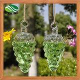 Grape Shape Hanging Glass Vases