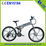 High Speed Folding Mountain Bike with 36V Battery 250W Motor