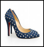 2014 Fashion High Heel Ladies Dress Stiletto Shoes Hcy02-024